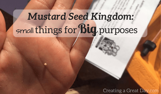 Mustard Seed Kingdom: Small Things for Big Purposes